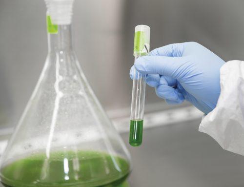 Zukunftstechnik: Audi e-diesel und e-ethanol aus Cyanobakterien